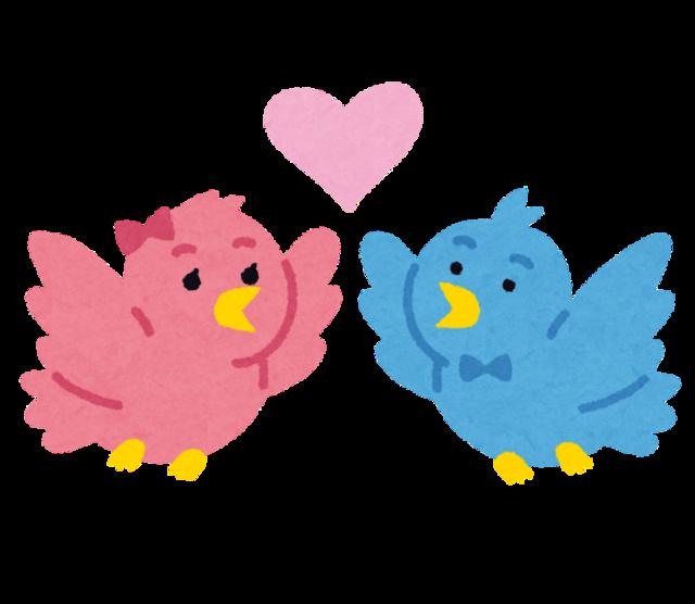 bird_couple.png