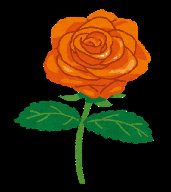 rose_orange.png