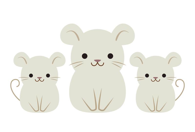 【ワロタ】ネズミの粘着シートを設置してみた結果wwwwwwwwwwwwwwwwwwww