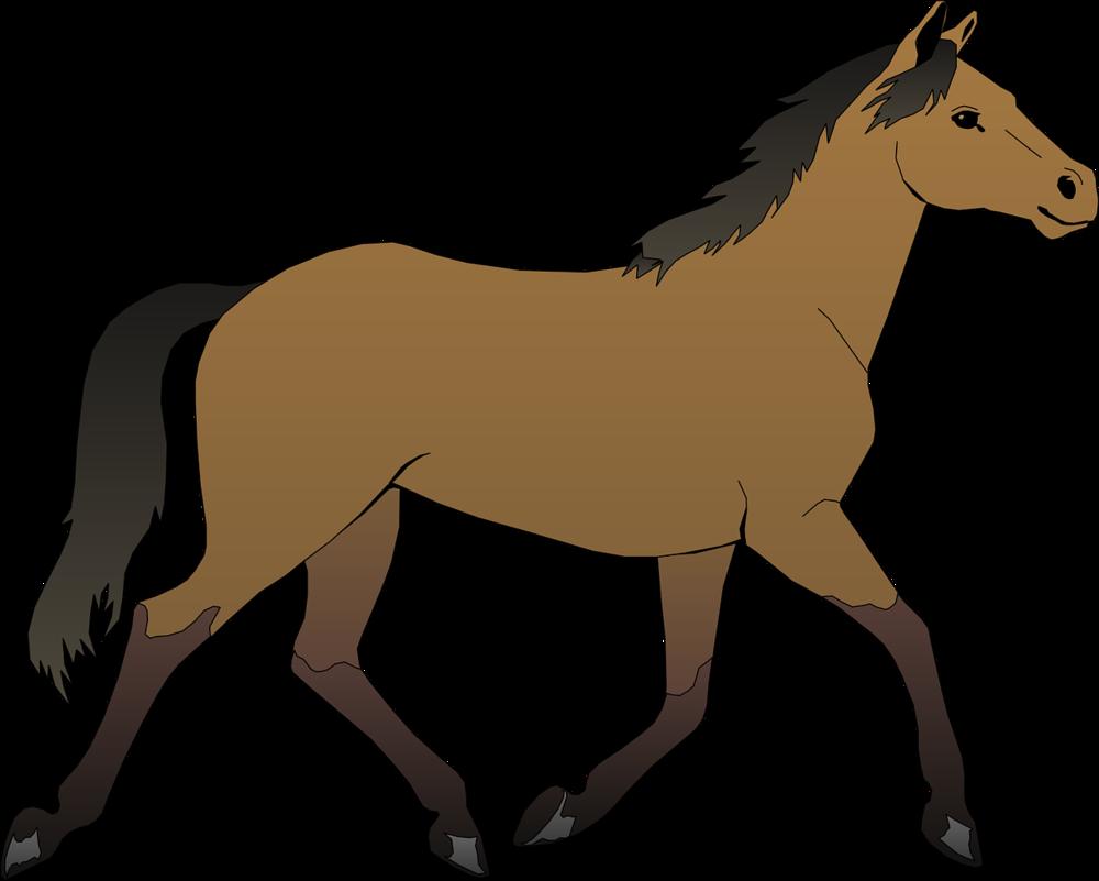 生物horse-48394_1280.png