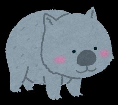 animal_wombat.png