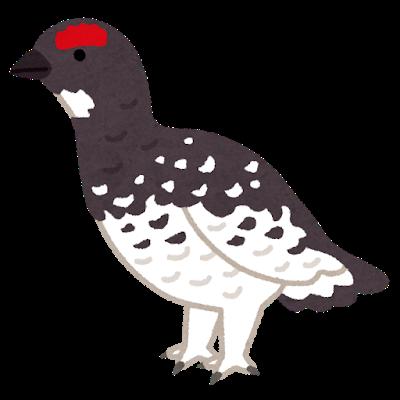 bird_raichou.png