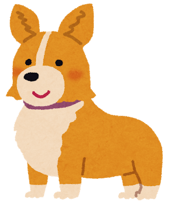 dog_corgi.png