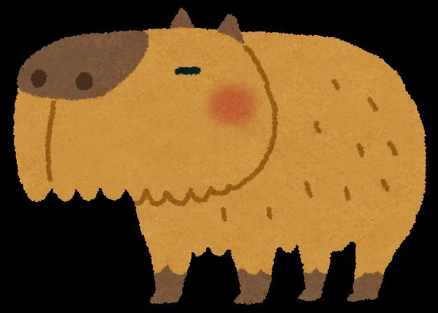 kapybara.png