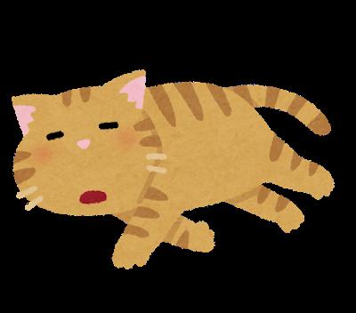 pet_darui_cat.png