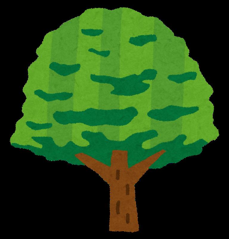 tree_keyaki.png